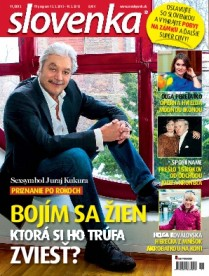 Slovenka 11 / 2013