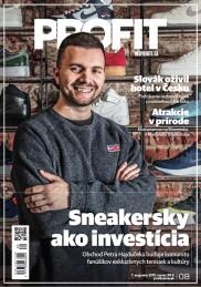 PROFIT (SK) 8/2019