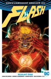Znovuzrození hrdinů DC: Flash 4