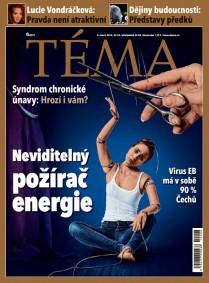 TÉMA DNES - 8.2.2019