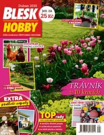 Blesk Hobby - 04/2018