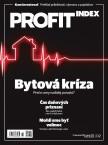 PROFIT (SK) 2/2020
