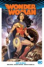 Znovuzrození hrdinů DC: Wonder Woman 4