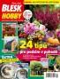 Blesk Hobby - 10/2021