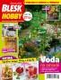 Blesk Hobby - 06/2020
