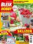 Blesk Hobby - 08/2019
