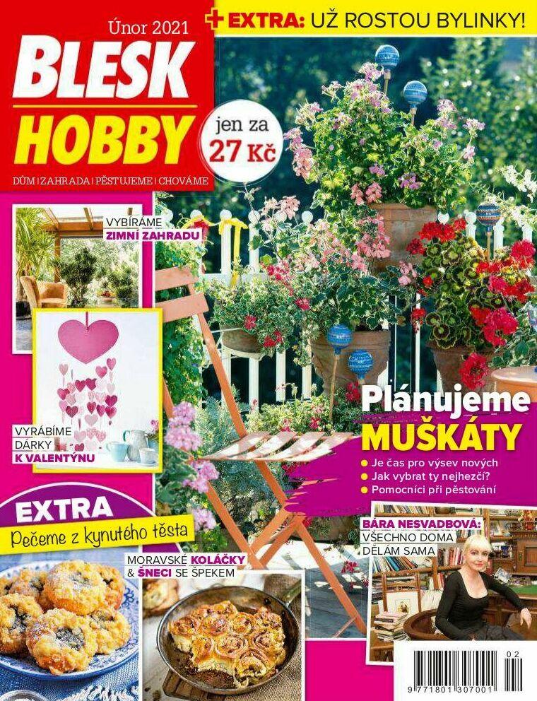 Blesk Hobby - 02/2021